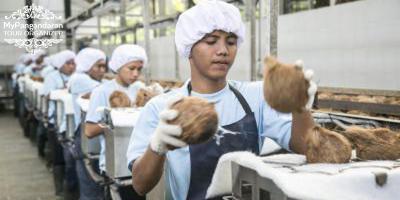 Sentra Industri Pengolahan Kelapa